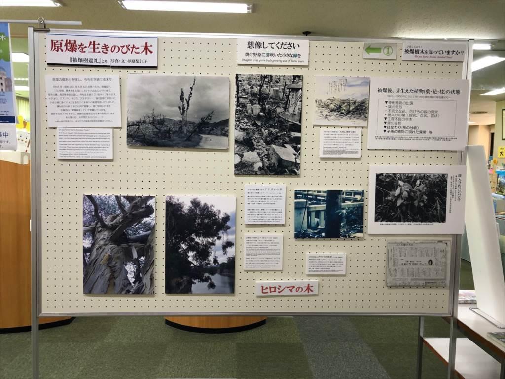 http://rieko-sugihara.com/information/item/AD1526E6-6F3C-4E1E-91CC-0C4C2A19CF57_R.JPG