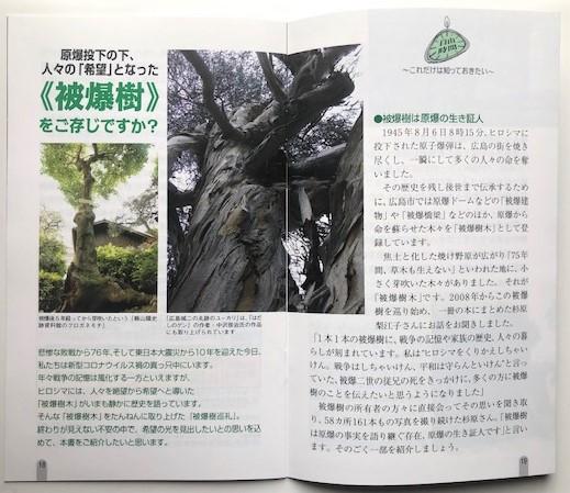http://rieko-sugihara.com/information/item/IMG_7255.jpg