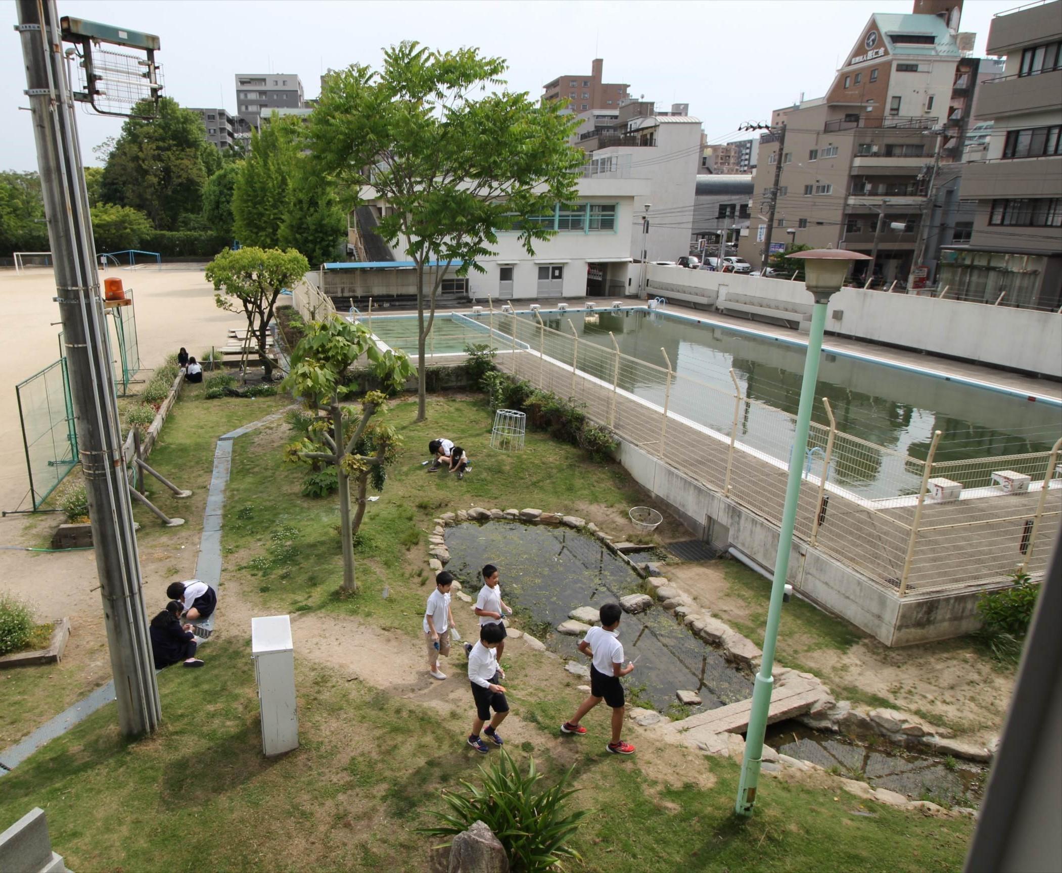 http://rieko-sugihara.com/photo_essay/item/IMG_5782%20%282%29_R.JPG