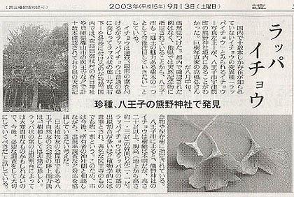 http://rieko-sugihara.com/photo_essay/item/utsunuki6.jpg