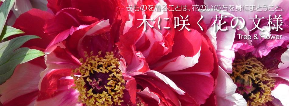 木に咲く花の文様メインイメージ