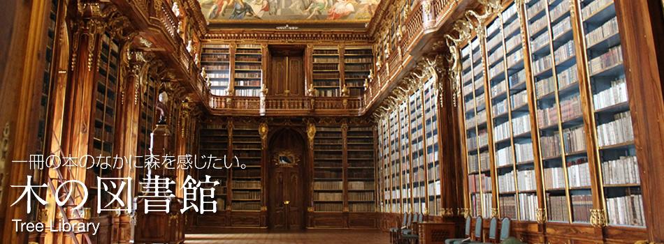 木の図書館、メインイメージ